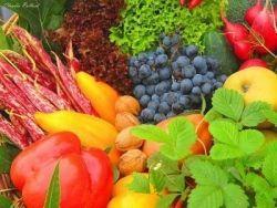Як потрібно харчуватися влітку, щоб запастися вітамінами на весь рік?