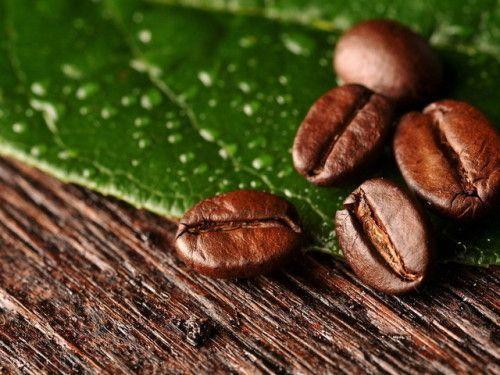 поезние властивості кави