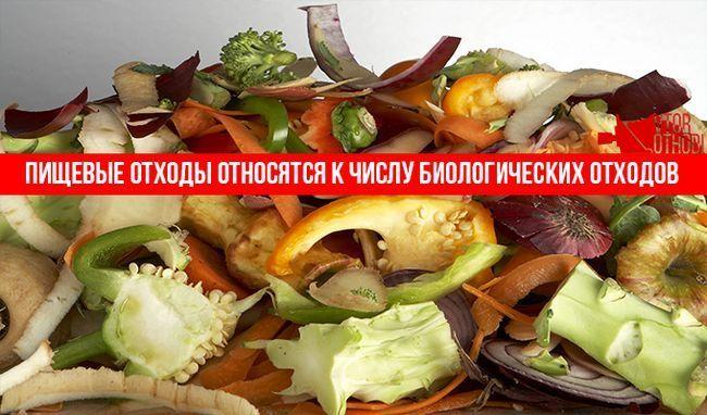 Харчові відходи відносяться до біологічних відходів