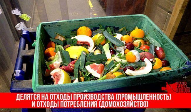 Харчові відходи діляться на два види