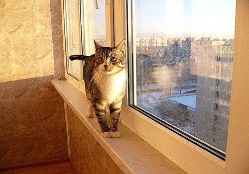 Оздоблення балкона пробкою своїми руками